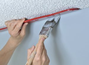 Exterior Painting for Mold - Applying Proper Prep Techniques